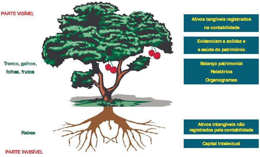 A árvore da metacompetência